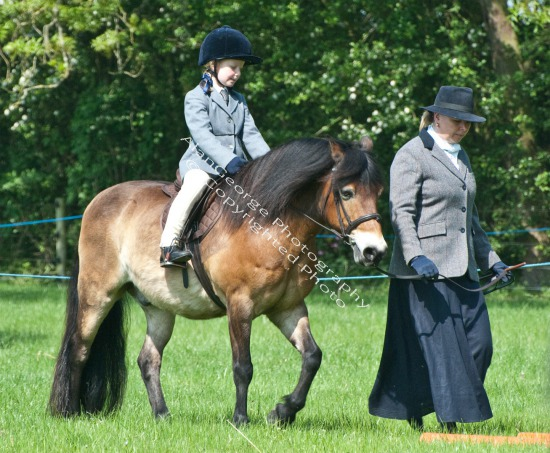South Kilworth Horse Show