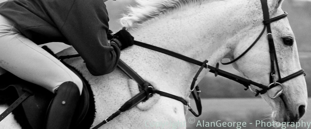 Hore & Rider